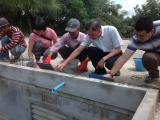 Volunteers and founder cemented on the roof of ACO's school